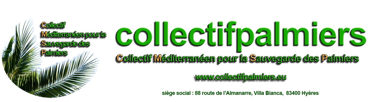 entete collectif