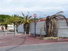 151001-port-Frejus2-05.jpg