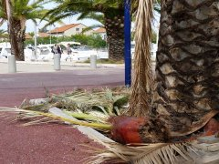 151001-port-Frejus2-07.jpg