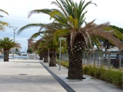 151001-port-Frejus2-09.jpg