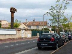 151001-rue-Roger-Louis-Frejus-01.jpg