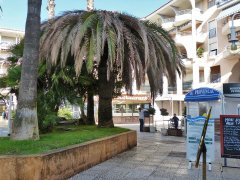 151006-port-Frejus-04.jpg